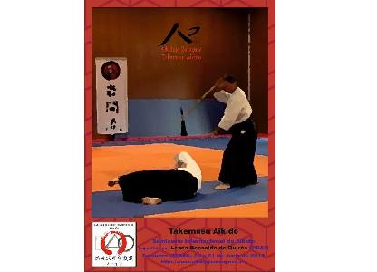 Noticia: TAKEMUSU AIKIDO